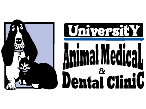 University Animal Medical and Dental Clinic Logo - Dog and Cat - UNCC Harrisburg NC Area Vet